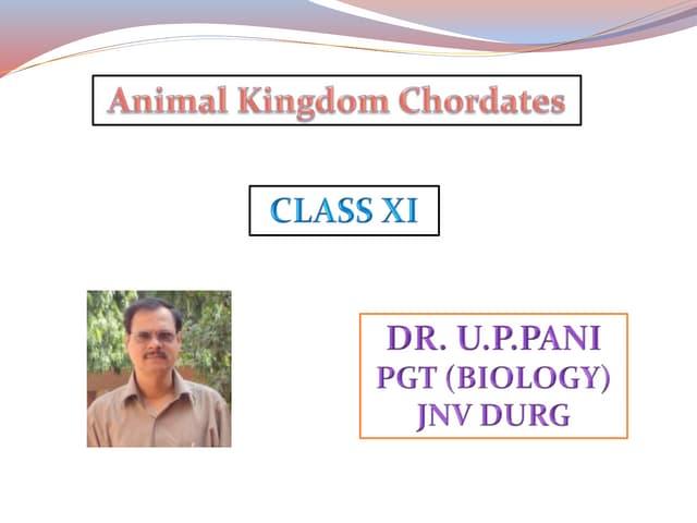 Animal kingdom Chordates