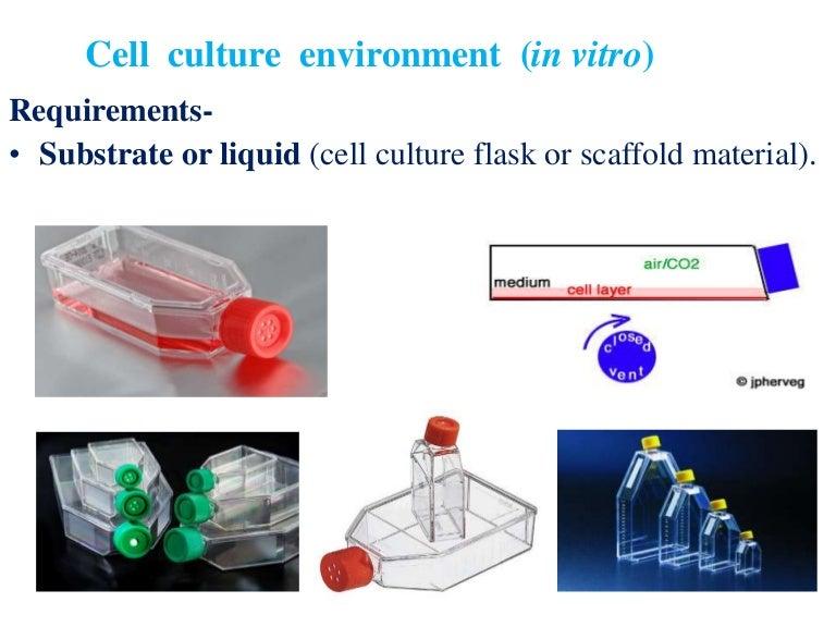Animal tissue culture (media)