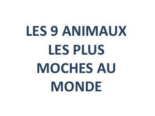 Plan Cul Beurette Cougar De Lyon Sur Cougar Lyon