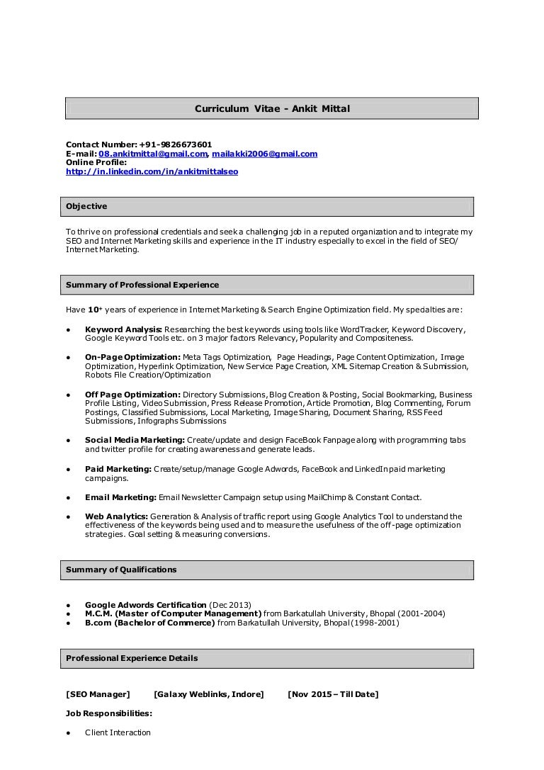 ankit mittal team lead seo sample resume