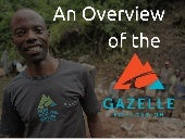 An Overview of the Gazelle Foundation