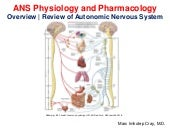 Autonomic Nervous System Physiology and Pharmacology_Overview| Review of ANS
