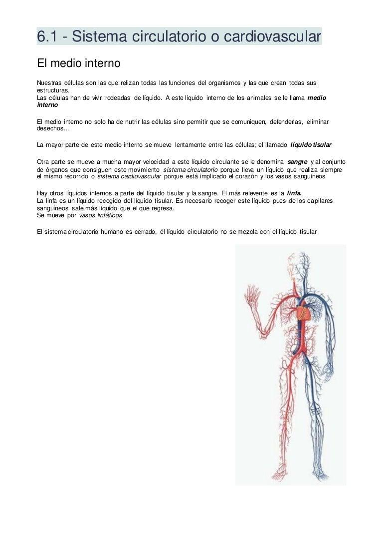 el exceso de líquido se escapa del pene durante una erección