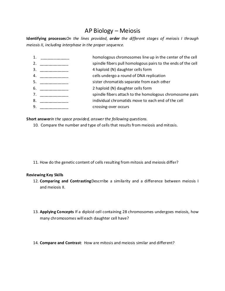 Ap biology meiosis – Chromosome Worksheet Answers