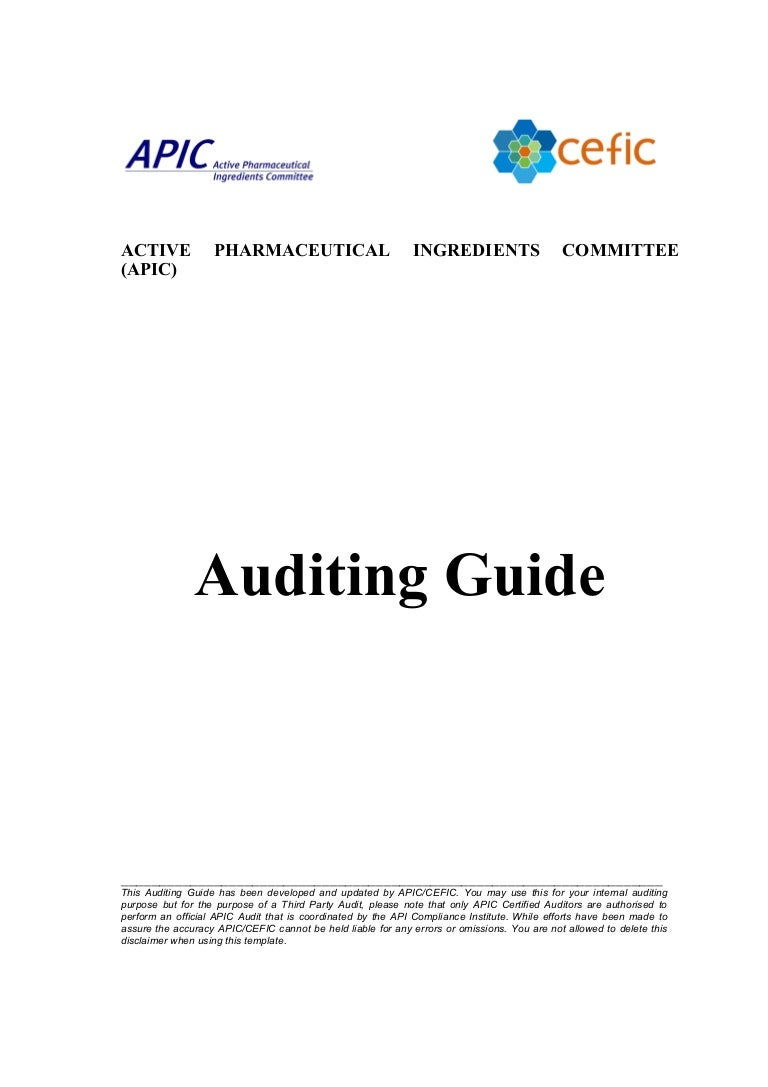 Apic auditing guide201008 1betcityfo Images