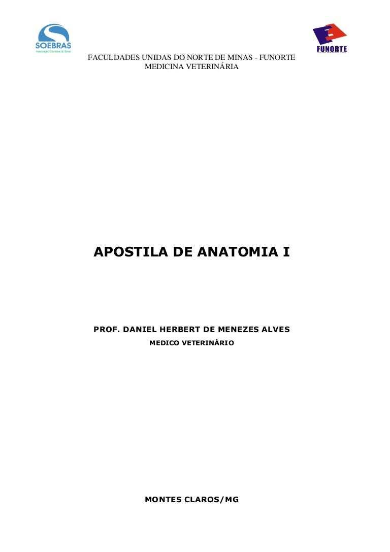 Anatomia Dos Animais Domesticos Getty Pdf