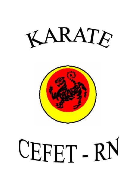 Apostila karate básico