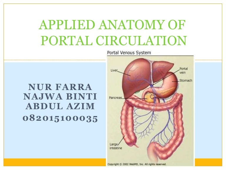 Applied Anatomy Of Portal Circulation