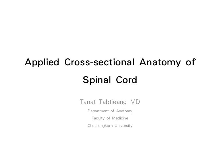 Applied cross sectional anatomy of spinal cord