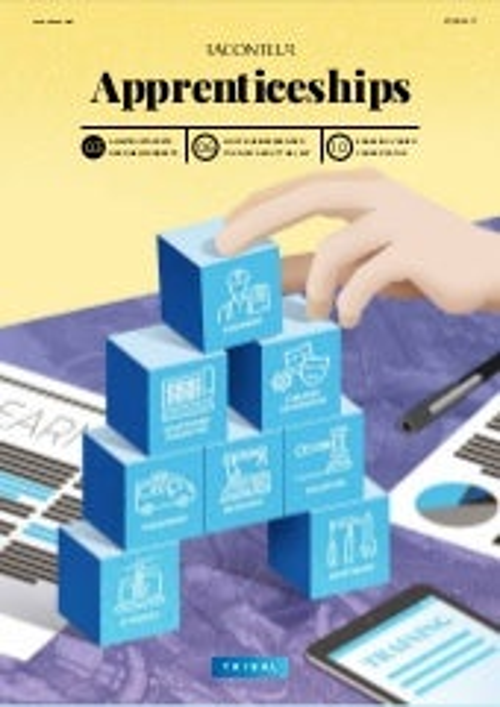 UK Govt Apprenticeship Levy special report 2017