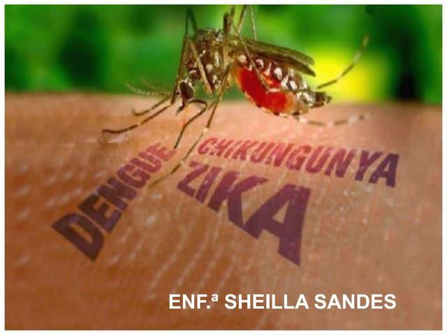 Dengue, Zika e Chicungunya