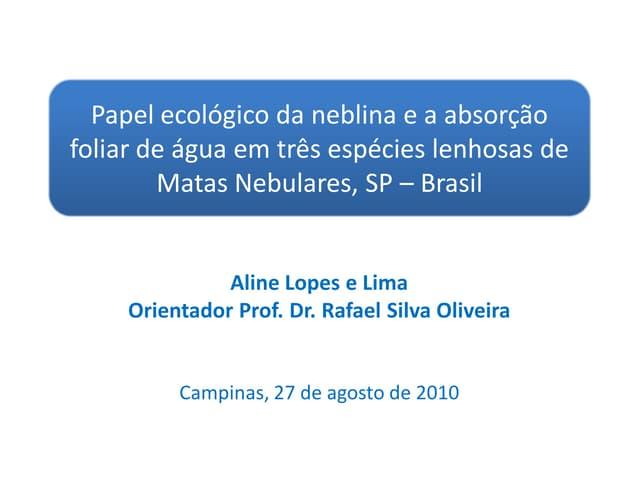 Papel ecológico da neblina e a absorção foliar de água em três espécies lenhosas de Matas Nebulares, SP - Brasil