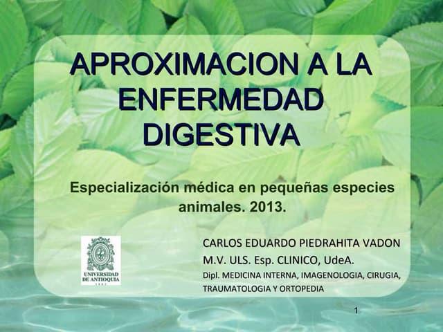 Aproximación de enfermedad digestiva UDEA 2013.