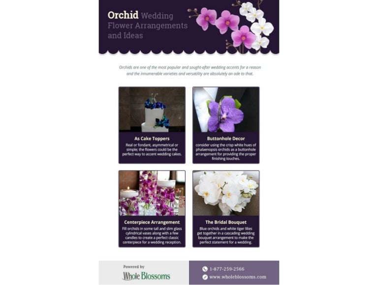 Select The Perfect Orchid Flower Arrangements For Your Decoration