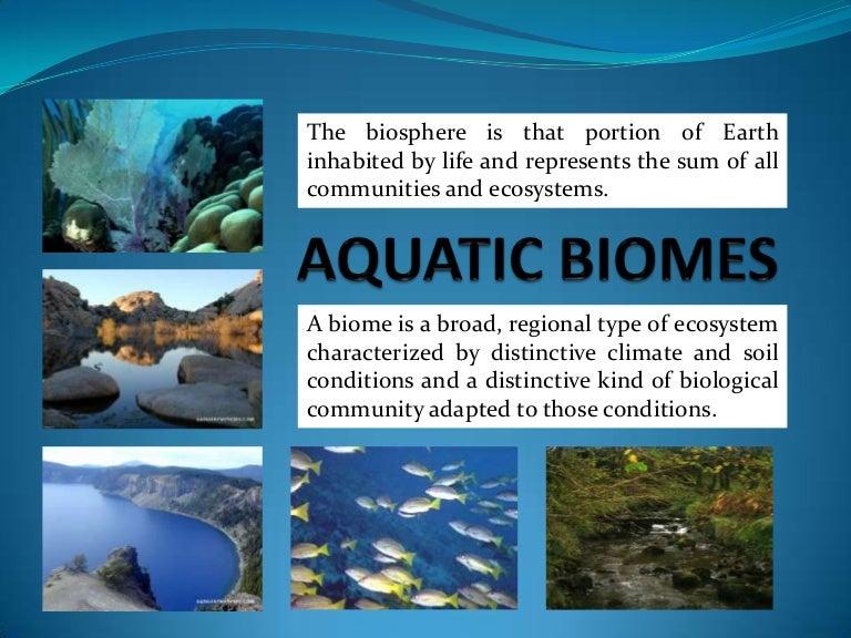 Aquaticbiomes 110327072017 Phpapp02 Thumbnail 4gcb1301211013