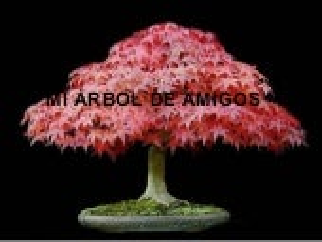 Arbol De Amigos[1]..