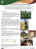 Feeds and Forage Development: Africa RISING science, innovations and technologies with scaling potential from the Ethiopian Highlands