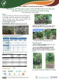 Intensifying with high value trees in Africa RISING Ethiopia for food and nutrition security, income and climate resilient farming
