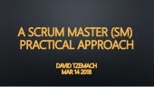 Scrum Master (SM) - Practical Approach