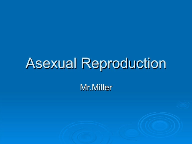 Starfish asexual reproduction type