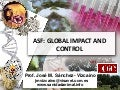ASF global impact and control