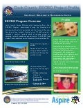 Cook County/Aspire EECBG Project Profile