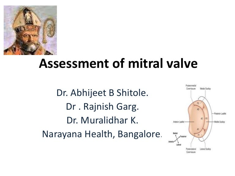 Assessment of mitral valve by TEE