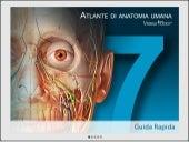 Atlante di anatomia umana per Online-Version