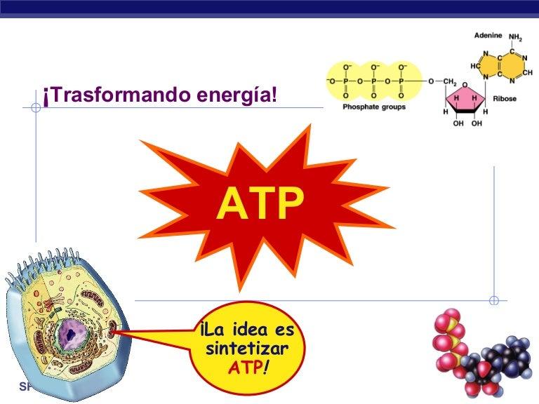 Presentacion de adp en el salon de barcelona - 3 part 3