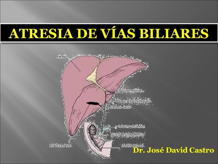 atresia del tracto biliar agenesia del feto de la vesícula biliar