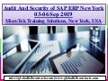 Audit and Security of SAP ERP New York