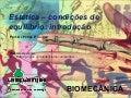 Biomecânica - Aula 3   oper vetoriais e cond equilibrio