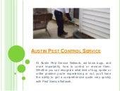Austin pest control service