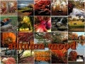 autumn mood - beautiful images of autumn with woodland choir's 'autumn'