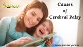 Ayurveda Treatment For Cerebral Palsy In Kochi | Ayurvedic Center For Autistic kids In Kerala