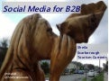 Social Media for B2B and Sales in Tourism: LinkedIn and Beyond