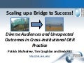 Scaling up a Bridge to Success