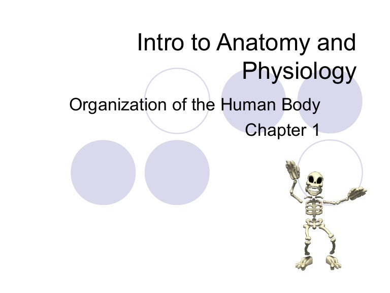 Chapter 1 notes Intro to Anatomy and Physiology