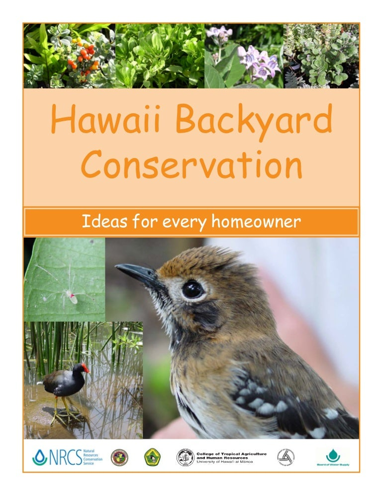 Hawaii Backyard Conservation Ideas For Every Homeowner - Backyard conservation