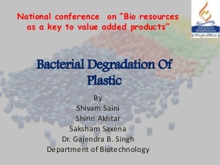 Bacterial degradation of plastic