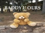 Baddy l'ours