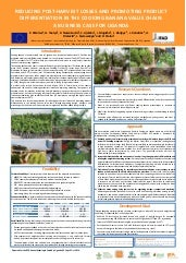 Reducing postharvest losses and promoting product differentiation in the cooking banana value chain: A business case for Uganda