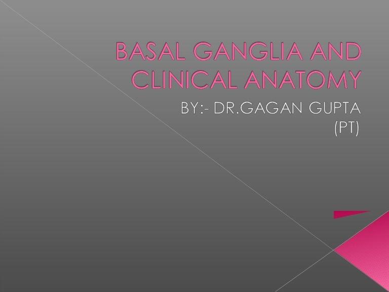 Basal Ganglia And Clinical Anatomy By Dr Gagan Guptapt