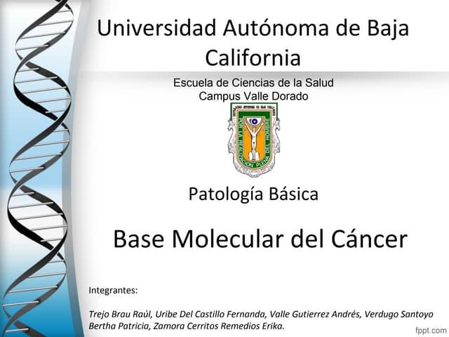 Base molecular del cancer