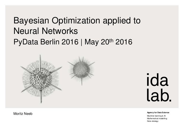 Bayesian Optimization applied to Neural Networks