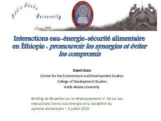"""Briefing de Bruxelles n. 56 : Dawit Guta """" Atténuation des compromis et promotion des synergies dans les interactions de la sécurité de l'eau, de l'énergie et de l'alimentation """""""