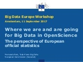 Big Data Europe SC6 WS 3: Where we are and are going for Big Data in OpenScience . The perspective of European official statistics Fernando Reis, Task-Force Big Data, European Commission (Eurostat)