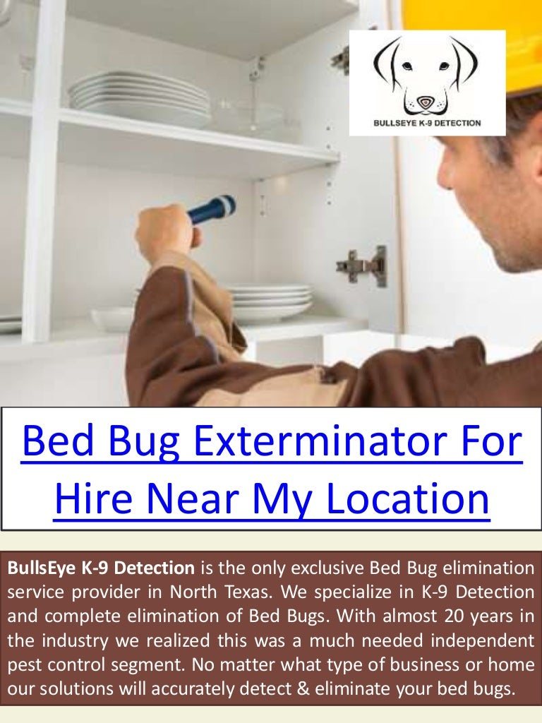 rubbing cost bugs news alcohol what bug bed for exterminators works cents