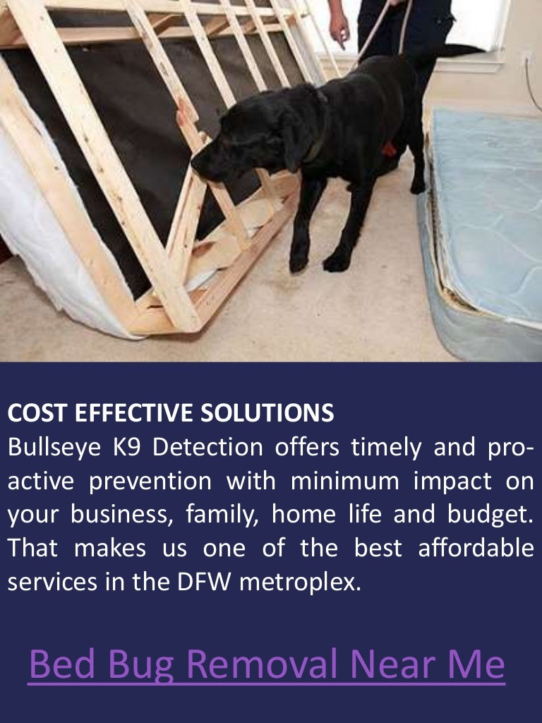 vacation w to cost facts life bites pest bedbugs treatment cycle control infestation treat bed bug bugs how hotel
