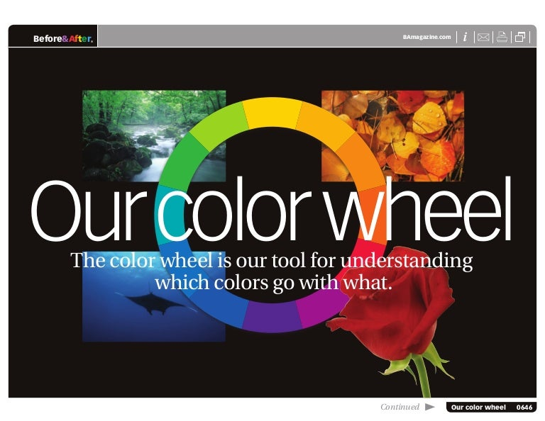 Before After 0646 Our Color Wheel